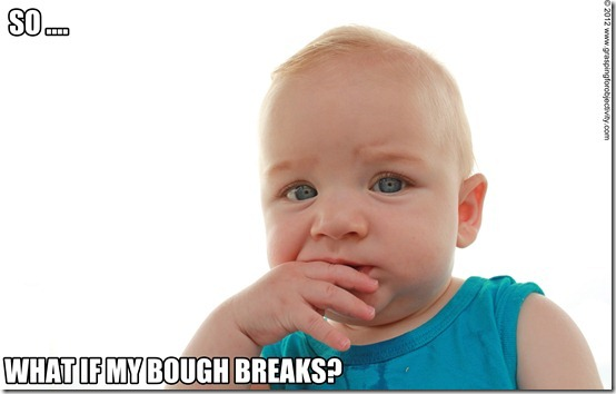 Noah Memes on Cradles