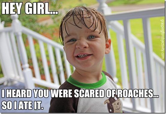Noah Memes Roaches