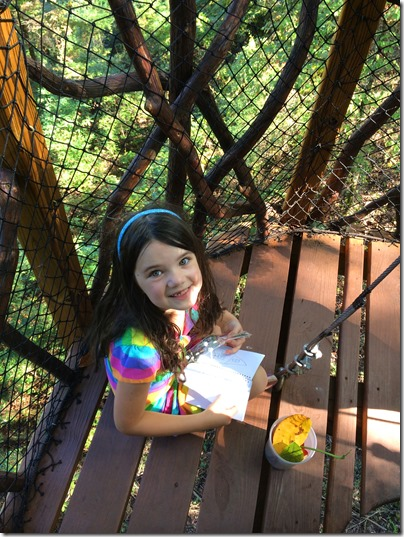 SkyHy Treehouse at Red Mountain Park