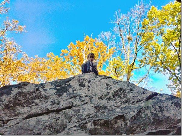 Moss Rock Preserve Boulder Field