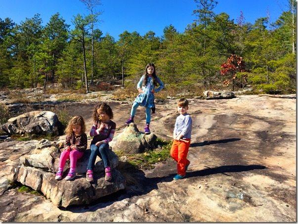Moss Rock Preserve Rock Desert