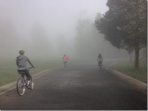 Bicycling into the fog