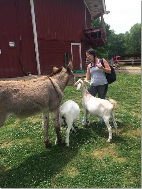Rachel Petting Zoo
