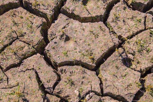 161104-lake-purdy-drought-_mg_7926