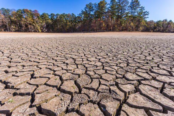 161104-lake-purdy-drought-_mg_8191