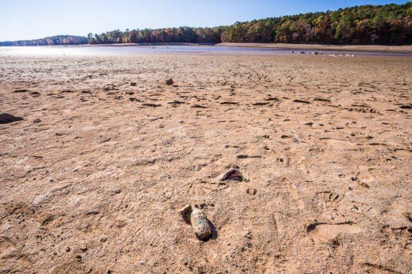 161104-lake-purdy-drought-_mg_8212